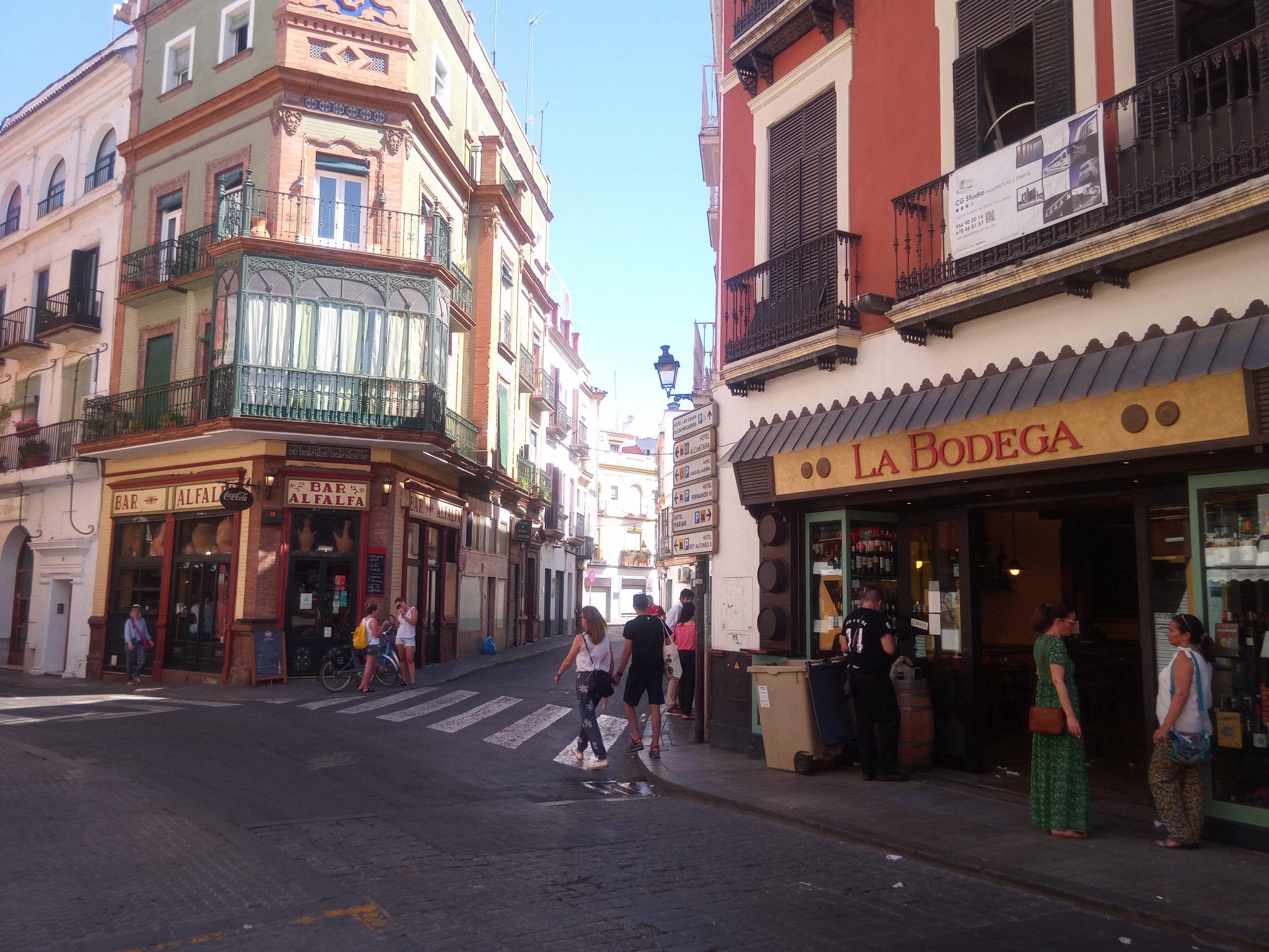 A18 Plaza Alfafa